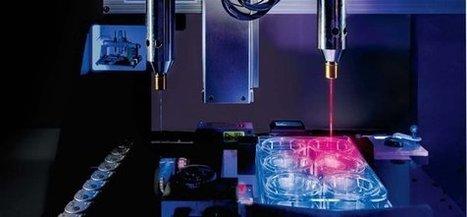 L'Oréal va imprimer de la peau en 3D pour tester ses produits   Nouveaux horizons et innovation   Scoop.it