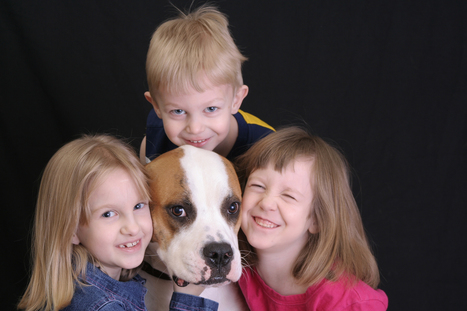 Why Supervising Dogs and Kids Doesn't Work | Pet Sitter Picks | Scoop.it