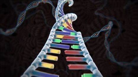 CRISPR could help scientists rewrite human DNA, develop perfect 'being' - Memeburn | Chair et Métal - L'Humanité augmentée | Scoop.it