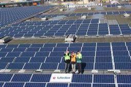 Heineken brews beer with 100% renewable energy | Renewable Energy | Scoop.it