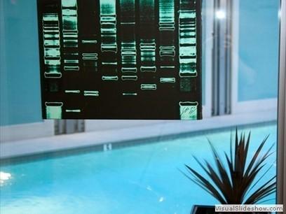 DNA Art by DNAlyse | Art Resources | Scoop.it