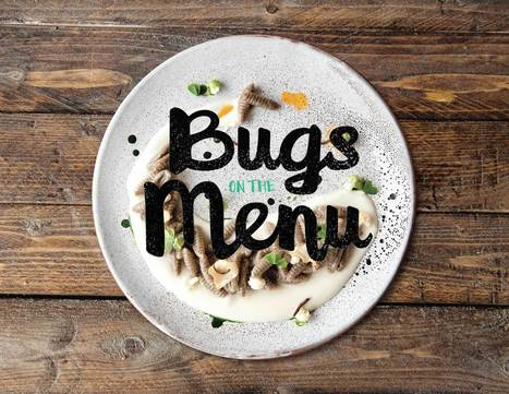 Bugs on the Menu | Entomophagy: Edible Insects and the Future of Food | Scoop.it