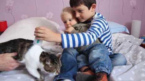 VIDEO. Comment éviter d'intoxiquer vos enfants ? | Cosmétique - Bio - Well being | Scoop.it