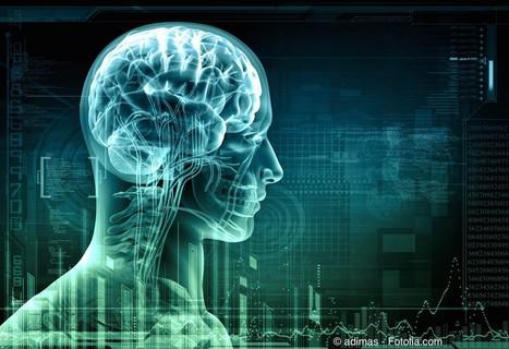 Le cerveau, centre de contrôle — Medium | Culture Gen. | Scoop.it