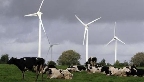 Fruges : le parc éolien géant va encore s'agrandir ! | Veille & Recherche | Scoop.it