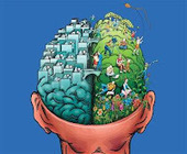 Rationally Speaking: The mismeasure of neuroscience | The brain and illusions | Scoop.it
