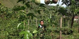 Agriculture et climat, l'exemple de la Colombie | Questions de développement ... | Scoop.it
