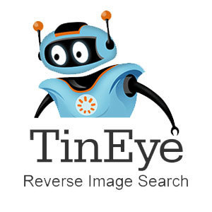 Check Out Some More Uses Of A Reverse Image Search Using ...   Social Media Research, Research Social Media   Scoop.it