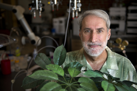 Daniel Nocera: Maverick Inventor of the Artificial Leaf | GMOs & FOOD, WATER & SOIL MATTERS | Scoop.it