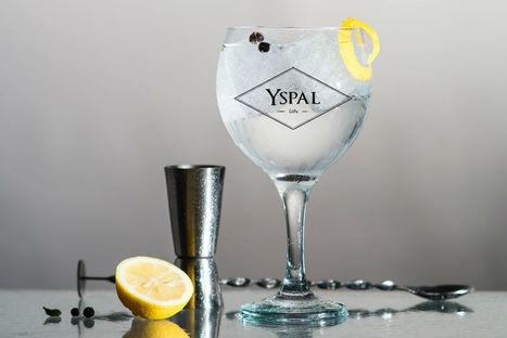 La importancia del hielo en el Gin Tonic | GinTonics | Scoop.it
