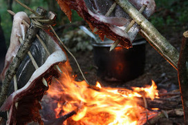 Wilderness Survival Skills and Bushcraft Antics: The Advanced ... | Prepping and Bushcraft | Scoop.it