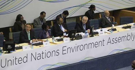 L'ONU lance sa première Assemblée pour l'environnement | Economie Responsable et Consommation Collaborative | Scoop.it