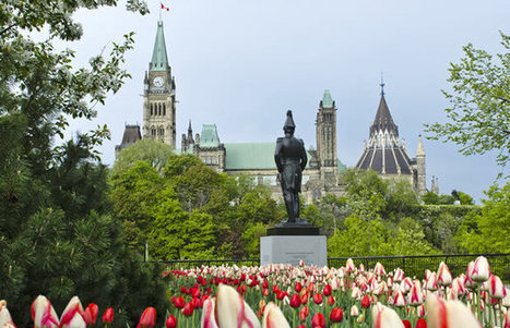 Can The Canadian Sports Betting Bill Impact The U.S.? | Uk Casinos | Scoop.it