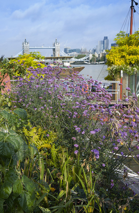 Book Review: Great Gardens of London - GardenDrum | Gardening | Scoop.it