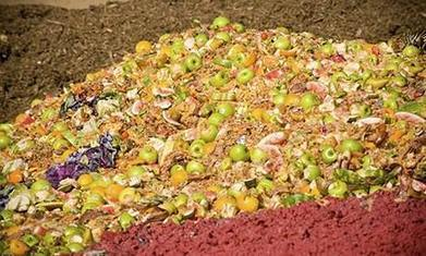 1/3 of the world's food is wasted – how can we stop the rot?   Africa   Scoop.it