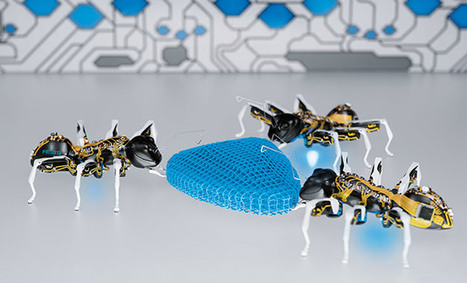 Festo's insect-inspired robots act like the real things | Biomimétisme, Biomimicry, Bioinspired innovation | Scoop.it