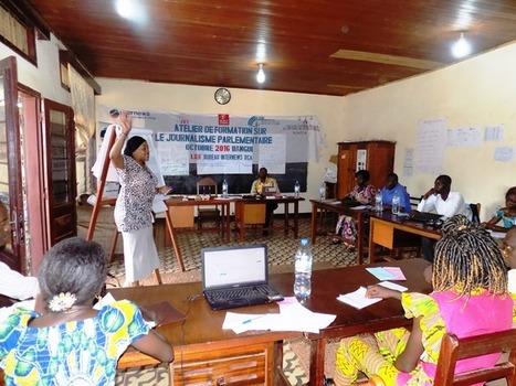 Centrafrique : Des professionnels des média à l'école du journalisme parlementaire - RJDH | Mediafrica | Scoop.it