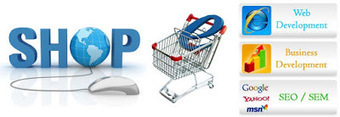 Top 5 Tips To Ensure Success Of E-Commerce PPC Campaign   Internet Marketing   Scoop.it