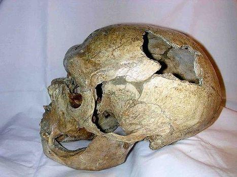L'homme de Neandertal enterrait bel et bien ses morts   Intervalles   Scoop.it