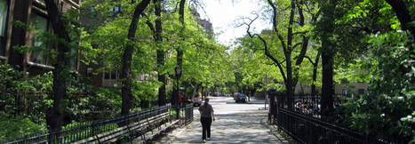 More money means more trees in US cities. — Environmental Health News | Green construction and sustainable development practices | Scoop.it
