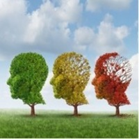 Signs of Normal Memory Loss | David York Agency | Alzheimer's Support | Scoop.it