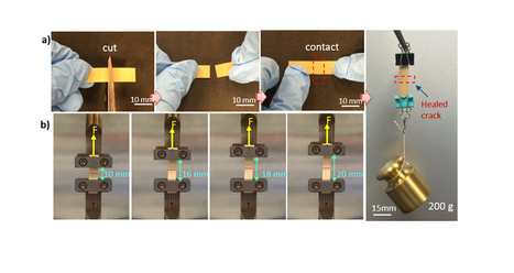 This self-healing material could solve many Wearable Woes | Future  Technology | Scoop.it