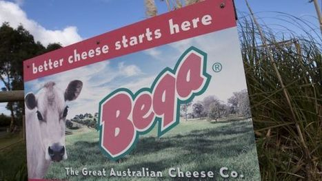 Bega Cheese dumped as baby formula venture sours | 12 Business Marketing | Scoop.it