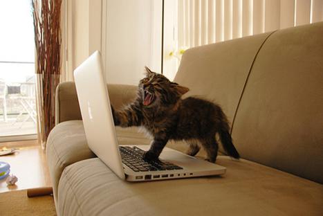 Enfin le droit à l'erreur sur Facebook - Blog du Dimanche | Geek & Games | Scoop.it