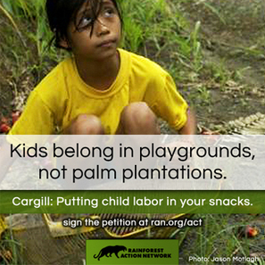 Tell Cargill CEO Gregory Page you're outraged his company is importing palm oil made with child and slave labor | Telcomil Intl Products and Services on WordPress.com