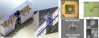 CMOS chip transformed into nanopore sensor - nanotechweb.org | USB devices and sensors | Scoop.it