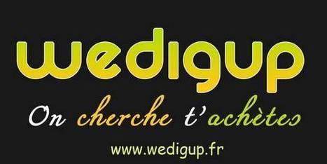 Wedigup : Que sont-ils devenus un an après ? | Startup Weekend Montpellier | Wedigup : Les compétences des uns font les affaires des autres | Scoop.it