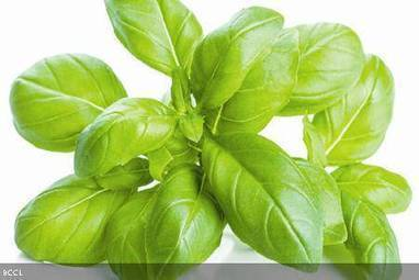 Basil for clear, healthy skin | Skin Care Tips | Scoop.it