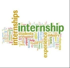 Internship for economics honors students...:) | Parul Singh | Scoop.it