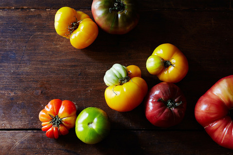 The Italians do it better: 7 Tomato Recipes | Italia Mia | Scoop.it