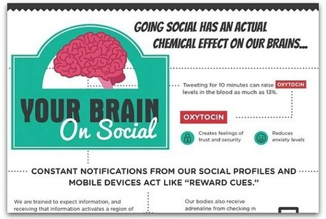 Infographic: What happens to your brain when you use social media | Collaborate | Scoop.it