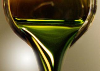 Votre futur diesel ?  De l'huile d'algue ! | Remembering tomorrow | Scoop.it