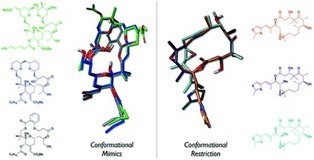 Conformation–activity relationships of polyketide natural products   LGN   Scoop.it