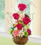 Birthday Flowers delivery USA :: Florist, Floral arrangements | Gorgeous Flowers Bouquets and more | Scoop.it
