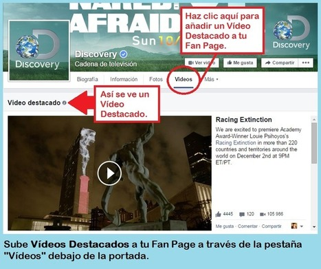 Nuevas funciones de Facebook para Marketing Digital | Seo, Social Media Marketing | Scoop.it