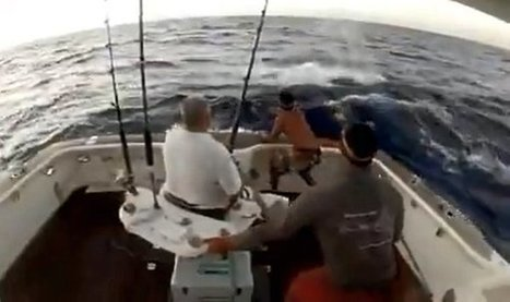 Fish Jumps In, Man Jumps out of Boat (Video) - Daily Picks and Flicks | Fishing | Scoop.it