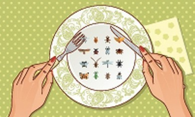 Should restaurants in Dubai serve bugs and grubs? - Restaurant Features - TimeOutDubai.com | Entomophagy: Edible Insects and the Future of Food | Scoop.it