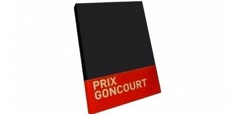 12 romans en piste pour le Goncourt 2012 | Je ne suis pas un livre de vampires * Not a book of vampires | Scoop.it