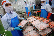 U.S. shrimp prices are up 20%. Why? A disease killing supplies in Asia | Internal mortality syndrome in vannamie culture | Scoop.it