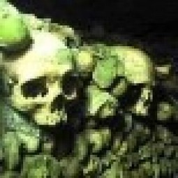 Resources for Bioarchaeology and Mortuary Archaeology News ... | Ancient History- New Horizons | Scoop.it