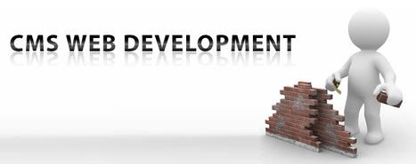CMS Web Development | Affordable SEO Service | Scoop.it