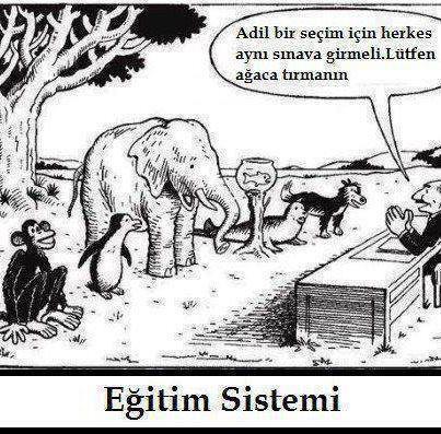 Adil bir sınav mümkün müdür? | educational technology | Scoop.it