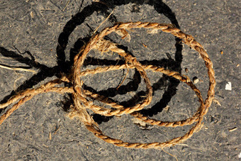 Aug 13, Cordage: Making Natural Rope | Wilderness Survival Training | Scoop.it