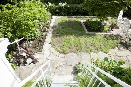 Cour écolo: une pelouse qui sent le thym | Carole Thibaudeau | Cour et Jardin | Potager & Jardin | Scoop.it