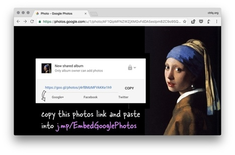 How to Embed Images from Google Photos into your Website | eines fotografia digital | Scoop.it