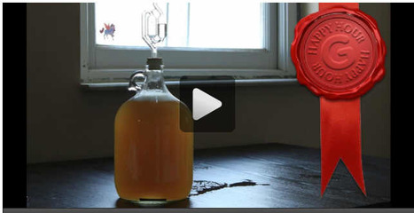 Happy Hour: How To Make Your Own Alcoholic Mead | Gizmodo Australia | RegionalFood | Scoop.it